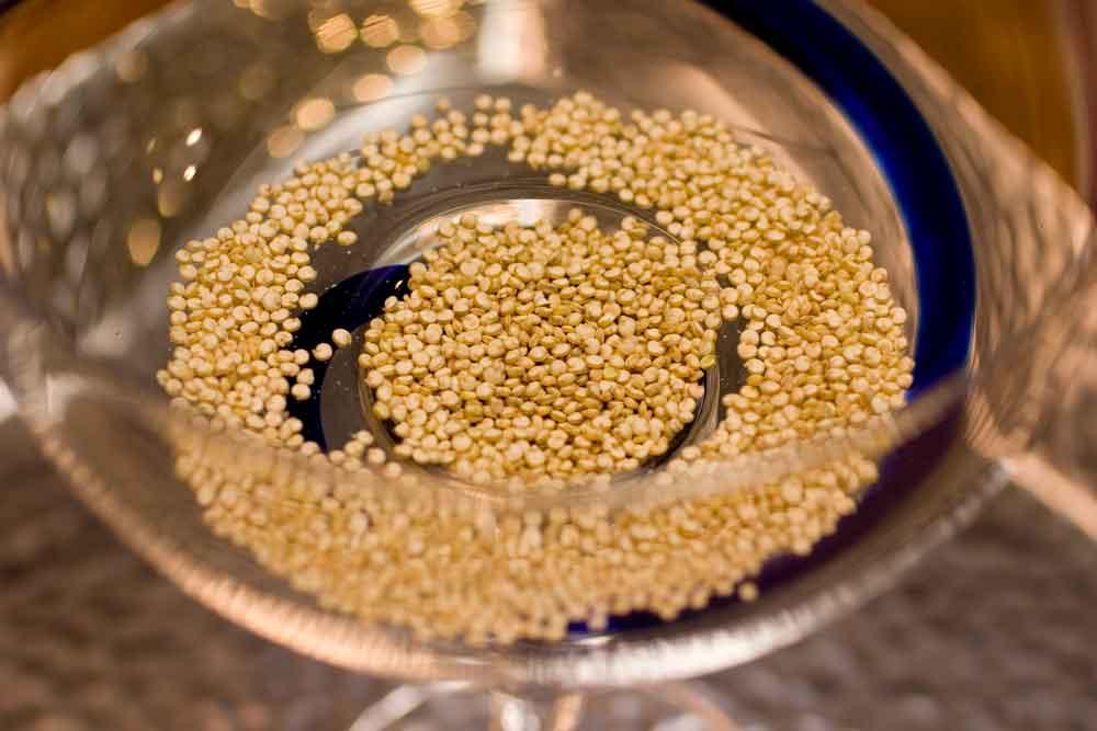 Introducing Quinoa