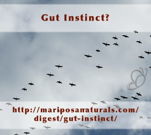 Why you may want to listen to that 'gut instinct' next time.
