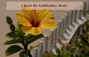 Gallbladder Removal - Why I Want Mine Back