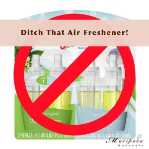 Say No To Plugin Air Fresheners
