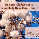 Body Odor and Artificial Fabrics