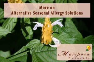 More on Alternative Seasonal Allergy Solutions