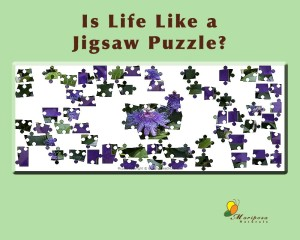 Could problems be like jigsaw puzzles? What is your role?