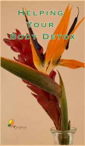 Tips on  helping your body detox